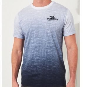 Hollister Ombre Graphic Short-Sleeve Mens T Shirt